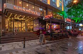 هتل Lion Istanbul