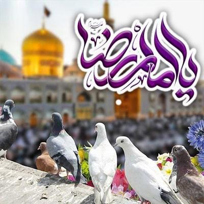تور مشهد ولادت امام رضا ( ص )